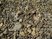 smooth river rocks pebbles.jpg