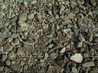 smooth rocks.jpg