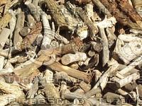 piled wood sticks.jpg