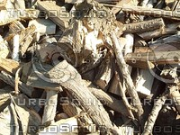 piled wood.jpg