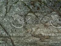 grey rock.jpg