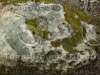 mossy rock.jpg