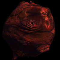 skin alien shader AA24241.TAR