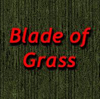 a_grass_blade.jpg
