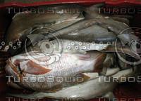 fishbasket1.jpg