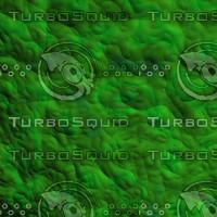 alien skin AA10033.jpg