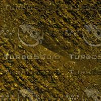 skin alien AA20409.jpg