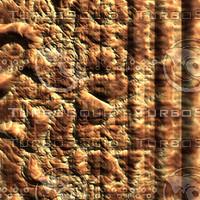 skin alien AA20427.jpg