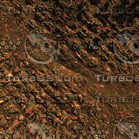skin alien AA22641.jpg