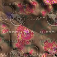 skin alien AA26409.jpg