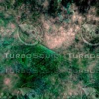skin alien AA26645.jpg