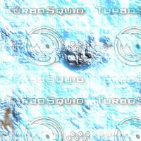 snow nature AA31005.jpg