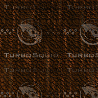tree bark AA31207.jpg