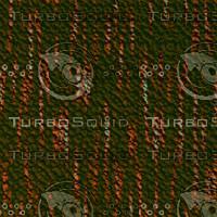 tree bark AA31209.jpg