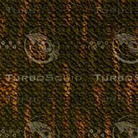 tree bark AA31215.jpg