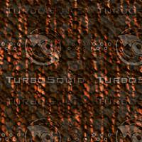 tree bark AA31251.jpg