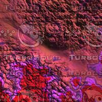 nature pink AA34807.jpg
