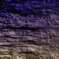 nature purple AA34919.jpg