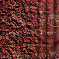 nature cracked AA36221.jpg
