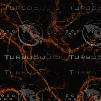 translucent fuzzy AA40847.jpg