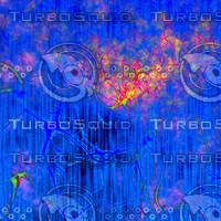 pink blue AA41719.jpg