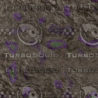 gray purple AA41803.jpg