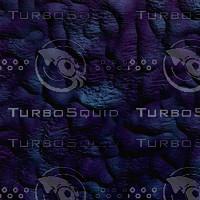 dark purple AA42539.jpg