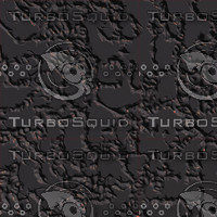 black grey AA43049.jpg