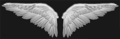 angel wings psd - photo #25