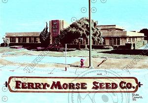 Ferry Morse