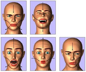expressions_tutorial.html