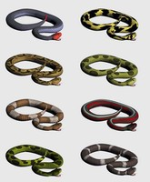 Snakes.zip