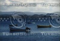 boats001.jpg