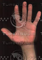 hand_palm.jpg