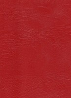 redplastic.jpg