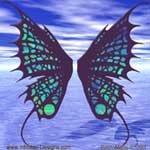 Buterfly_Wings