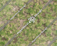 HFD_GrassPatchy01_Sml.jpg