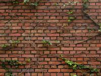 brick0009.jpg