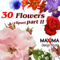 flowers_clipart2.zip