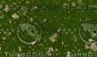 grass-seamless2.jpg