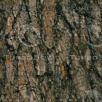 wood_02.zip