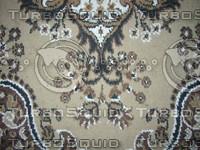 CarpetDirty01.JPG