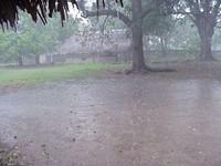 Hard Rain.wav