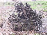 Wood Pile 02.jpg