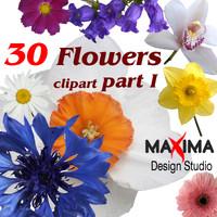 flowers_clipart1.zip