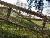 wood0281.jpg