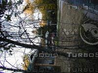 wood0594.jpg