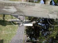 wood0713.jpg