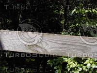 wood0817.jpg
