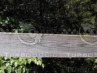 wood0819.jpg